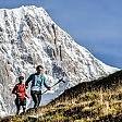 Ultra Trail du Mont Blanc di corsa tra vette e pascoli    L'articolo