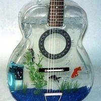 Design: gli acquari i più stravaganti del mondo