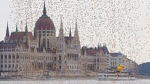 Budapest, piovono paperelle