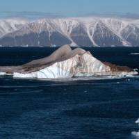 Sale il livello dell'Oceano Antartico, il Polo Sud si sta sciogliendo