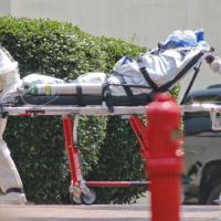 Ebola, caso sospetto nelle Marche: ricoverata donna rientrata dalla Nigeria
