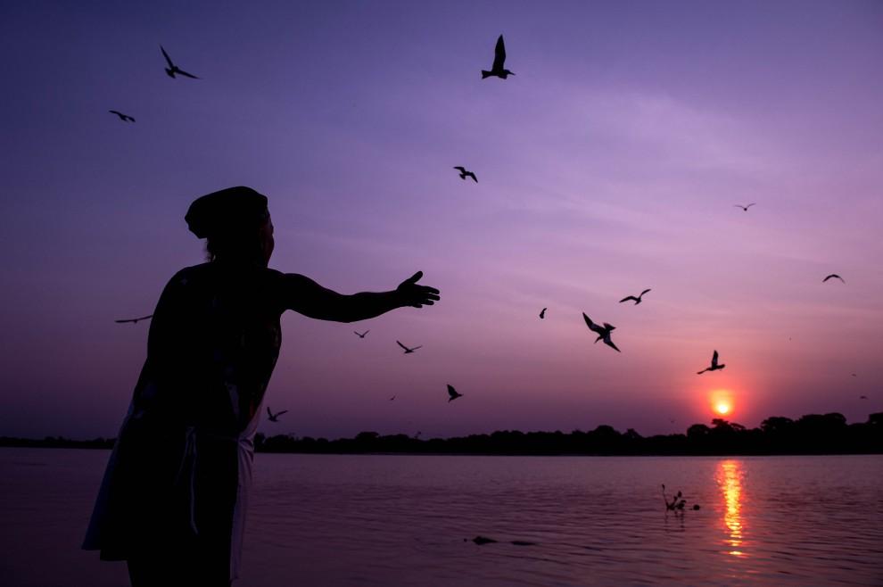 Nel paradiso delle cicogne: le meraviglie del Pantanal