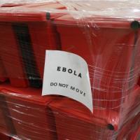 """Galli: """"Ebola, se la diagnosi è rapida non c'è rischio di contagio"""""""