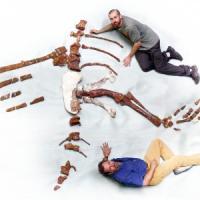 Scoperto lo scheletro del dinosauro che sapeva nuotare
