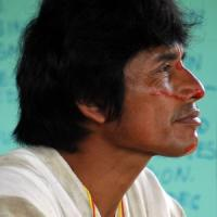 Assassinato il Chico Mendes del Perù, difendeva la foresta da tagliatori illegali e narcos