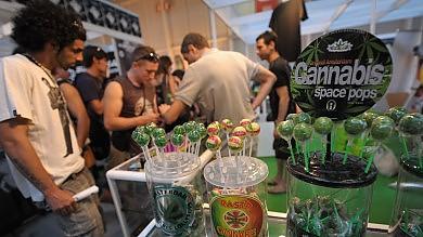 Cannabis, cresce consumo tra adolescenti quasi uno su quattro fuma spinelli