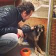 Jovanotti, appello sul web Adottate il cucciolo Biagio