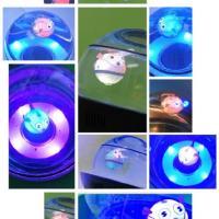 """Pesci robot dentro """"Capsule"""", l'acquario hi-tech"""