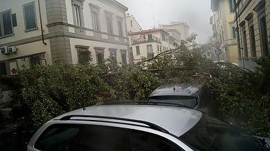 """Toscana, bomba d'acqua e grandine   foto   Il sindaco di Firenze: """"State a casa""""   vd    Crolla tetto di una scuola, evacuazioni"""