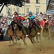 Doping al Palio d'Asti controlli a tappeto  nelle stalle dei cavalli
