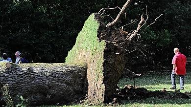 Maltempo: 2,5 milioni di danni  fra musei e parchi comunali