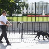Usa, intruso Casa Bianca aveva 800 proiettili in auto