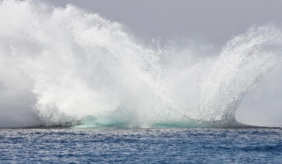 La forza e lo splendore, il salto della balenottera è uno spettacolo