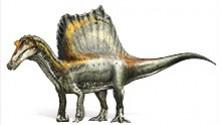 Spinosauro, scoperta dell'anno lo speciale interattivo