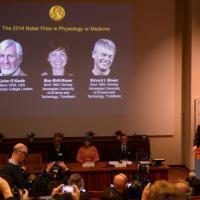 Nobel Medicina a John O'Keefe, May-Britt ed Edvard Moser per la scoperta del 'Gps' del...