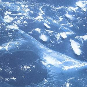 Oceani più acidi del 26% in 200 anni. Colpa delle emissioni Co2