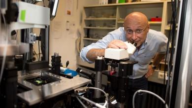 Nobel per la Chimica ai super microscopi scrutano l'infinitamente piccolo   Foto