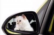 """Opel Corsa e il gatto """"Choupette"""" posano per Karl Lagerfeld"""