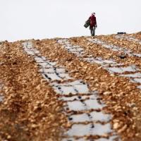 La richiesta di prodotti agricoli salirà del 60% entro il 2050