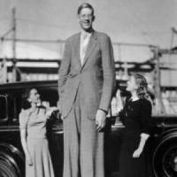Sono 400 i geni che determinano l'altezza