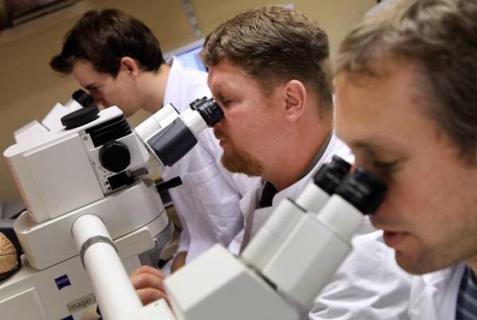 Nanoparticelle 'made in Italy' rimuovono placche Alzheimer