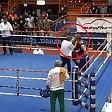 Il pugile prende  a pugni l'arbitro