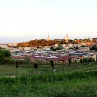 Là dove c'erano sterpaglie e spazzatura ora ci sono gli orti urbani. All'ombra del...