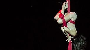 Arriva il Cirque du Soleil lo show è a mezz'aria