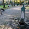 Legionella, procura Milano indaga su tre nuovi casi