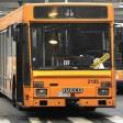 I nomadi aggrediscono  i passeggeri, il sindaco  del Pd propone bus separati