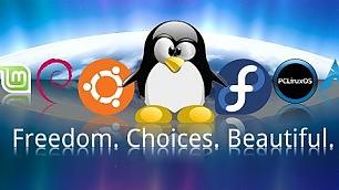LinuxDay, festa del pinguino per scoprire il software libero