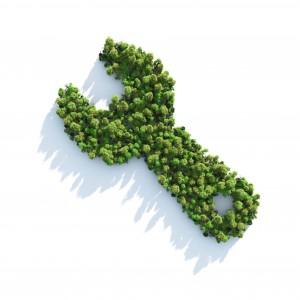 Dall'agronomo al bioarchitetto: la rivincita dei mestieri green che fanno crescere l'Italia
