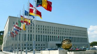 Ultime Notizie: Esteri, Napolitano frena Renzi: congelata la rosa di donne per il nuovo ministro
