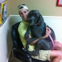 Se l'appuntamento è dal veterinario: il terrore nello sguardo