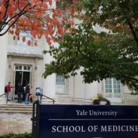 Lo scandalo di Yale, ricercatrice