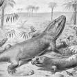 Grande estinzione, un fossile racconta come andò