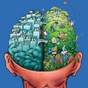 Fotografati gli effetti della marijuana sul cervello