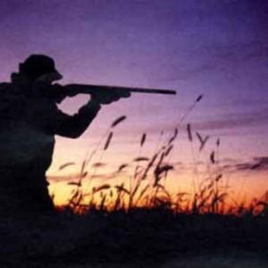 Via il piombo dalle munizioni dei cacciatori: rischi per biodiversità e persone