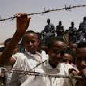 """Sinai, gli """"Occhi nel deserto"""", il traffico di organi, la tratta degli schiavi e lo sceicco  salafita """"solidale"""""""