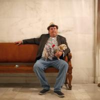 Un chihuahua in comune, Frida sindaco di San Francisco per un giorno