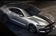 Shelby GT350, se una Mustang non basta