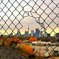 Scatti oltre la rete: la realtà è in gabbia