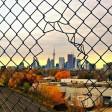 Scatti oltre la rete realtà in gabbia
