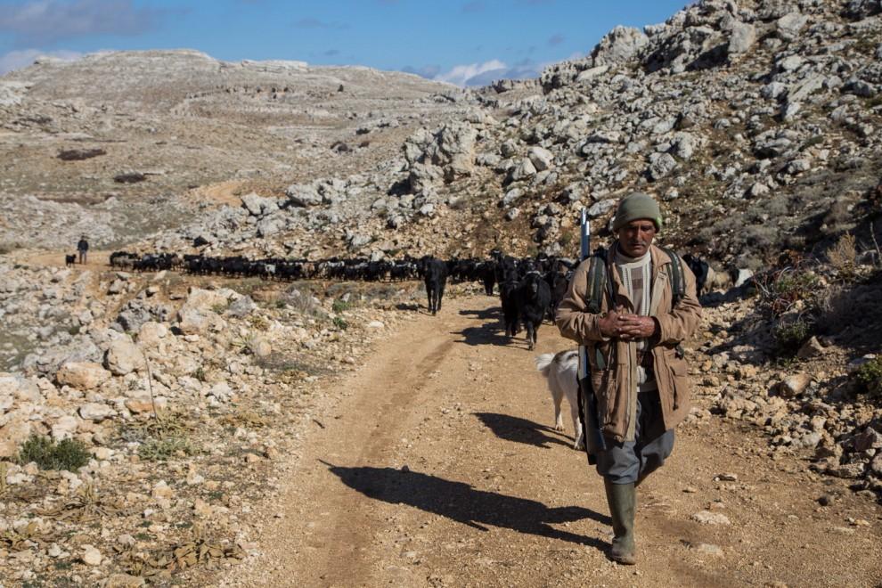 In viaggio con gli Yoruk, gli ultimi pastori nomadi dell'Anatolia