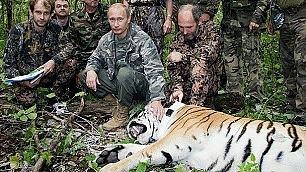 Cina, razzia di capre al confine Le tigri di Putin sotto accusa