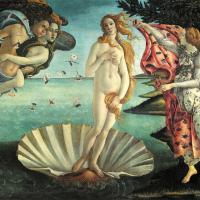 La Venere senza Venere: i quadri si svuotano
