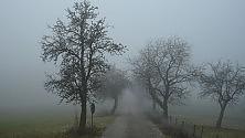Sorpresa, in Val Padana la nebbia è dimezzata