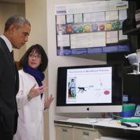 """Obama: """"Il Congresso liberi i 6 miliardi di dollari per battere l'Ebola"""""""