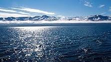 """Una """"cozza"""" nascosta per 2 mln di anni nell'Artico"""