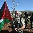 Europarlamento sostiene riconoscimento Palestina
